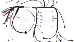 1998 F-Body 0411 Harness