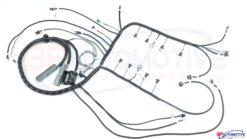 LS1 T56 Standalone Harness