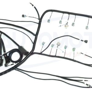 LS3 standalone harness full view